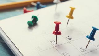 Pinos sobre um calendário