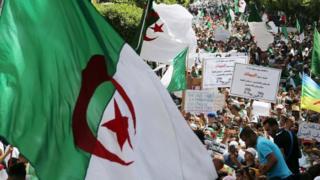 متظاهرون جزائريون يرفعون شعارات بمطالبهم