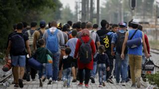 "Syrian refugees walk towards Greece""s border with Macedonia, near the Greek village of Idomeni - 11 September 2015"