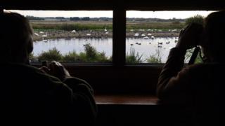 birdwatchers at martin mere