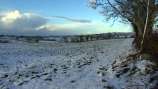 This snowy scene was filmed near Katesbridge on 12 December