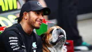 Lewis Hamilton and his dog