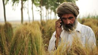 India farmer dey for field dey make call for phone