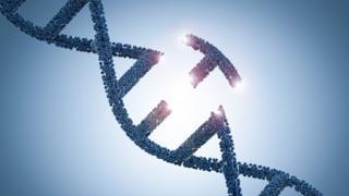 A técnica de edição genética CRISPR
