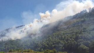 Fire at Cwm Rheidol
