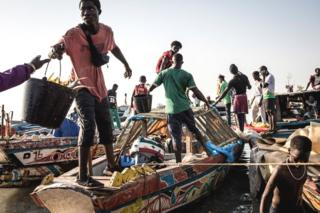 Rugby Fishermen unload their catch at a port in Bissau, Guinea-Bissau - Monday 25 November 2019