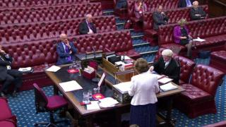 House of Lords at work
