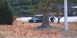 유엔사가 공개한 오씨의 극적인 탈출 장면