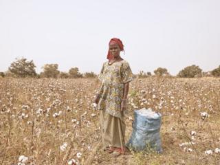 in_pictures Adamo Diallo, Cotton farmer