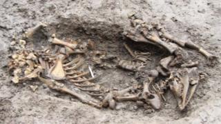 Some of the bones