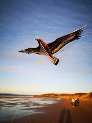 Flying a kite on Gullane beach