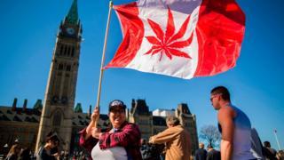 Kanada'da esararın yasallaşması için kampanya yapan bir kadın, ülkenin bayrağında yer alan akçaağaç yaprağını kenevir yaprağı ile değiştirmiş