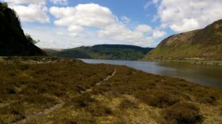 Cwm Elan, Powys