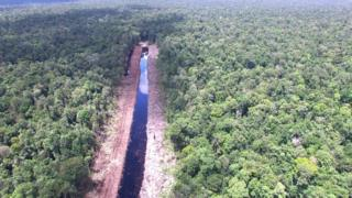Canal dug into forest in West Kalimantan, Indonesia