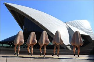 A row of noses dance in front of the Opera House