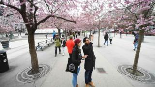 Стокгольмда олча гуллади