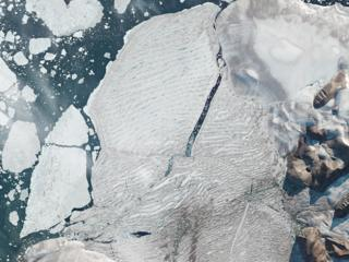 Milne Ice Shelf on 31 July