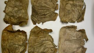The book has been unavailable to researchers for over 200 years