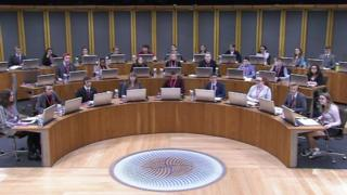 Youth Parliament in the Senedd on Saturday