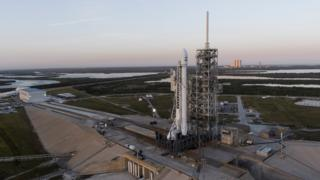 Falcon on the pad