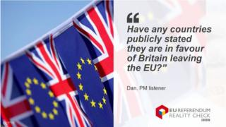 Dan, PM listener asks whether any countries have publically stated they are in favour of Britain leaving the EU.