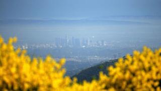 Лос-Анджелес в тумане