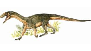 أقارب ديناصورات