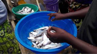 Uvuvi Burundi