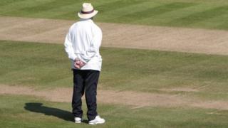 Cricket umpire