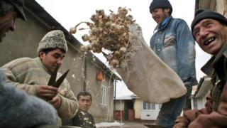 В Румынии считается, что чеснок охраняет дом и семью от злых духов