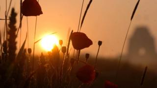 Photo of field in Somme