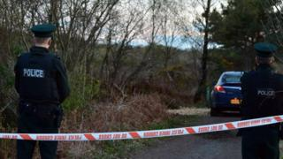Police attending serious incident in Peatlands Park in Dungannon