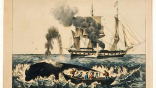 Currier & Ives lithogragh of whalers attacking a right whale