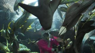 A diver dressed in pink feeds fish at Singapore's Underwater World attraction