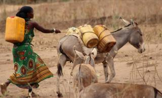 Woman leading donkey in Marsabit, Kenya