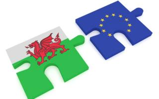 Wales and EU jigsaw pieces