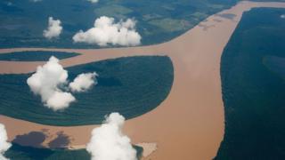 Vista aérea del Amazonas