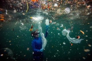in_pictures Free-diver underwater surrounded by litter