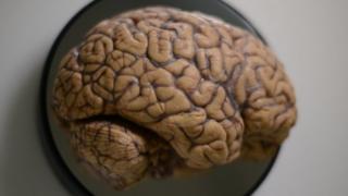 Una figura de un cerebro