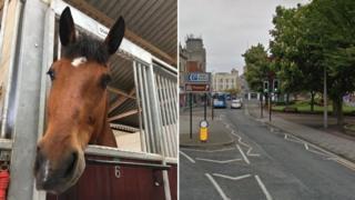 Quantock and Weston-super-Mare, Somerset