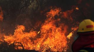 Bombeiro combate incêndio em Roboré, na região de Santa Cruz em 22 de agosto de 2019