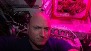Scott Kelly with lettuce on ISS