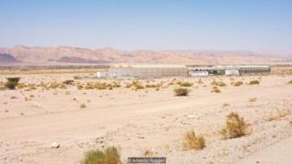โรงเรือนปลูกผักกลางทะเลทราย