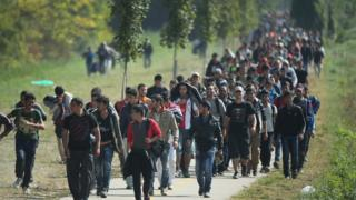 Migrants walk from Hegyeshalom on the Hungarian border walk into Austria on 23 September 2015