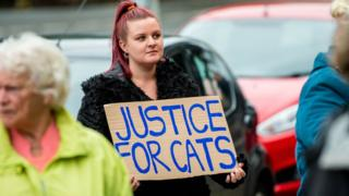 Justice for cats sign