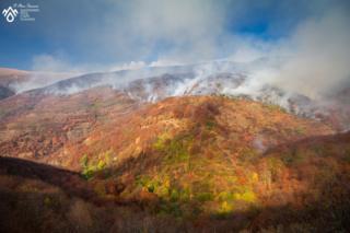 požar na staroj planini kod toplog dola