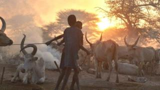 Previous clashes in South Sudan have been over issues like cattle