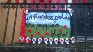 Elizabeth Fitzpatrick, of knitted decorations for Armistice Day in Haverfordwest, Pembrokeshire