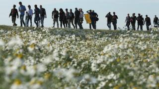 мигранты на дороге