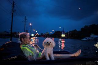 A rescue helicopter hovers in the background as an elderly woman and her poodle use an air mattress to float on flood waters from Tropical Storm Harvey while waiting to be rescued from Scarsdale Boulevard in Houston.